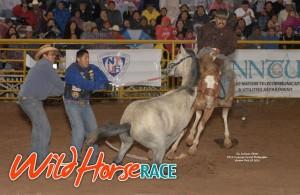 Wild Horse Race at Navajo Nation Fair