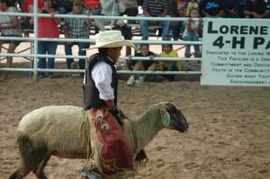 Navajo-Wooly-Riding 003