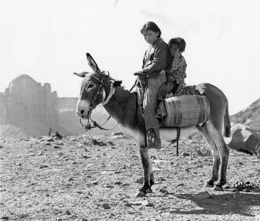 Navajo Girl and Boy on Donkey 1930's
