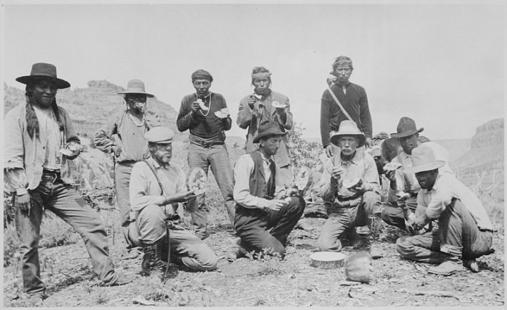 William B. Douglas party, including Navajo Ute, and Paiute Indians