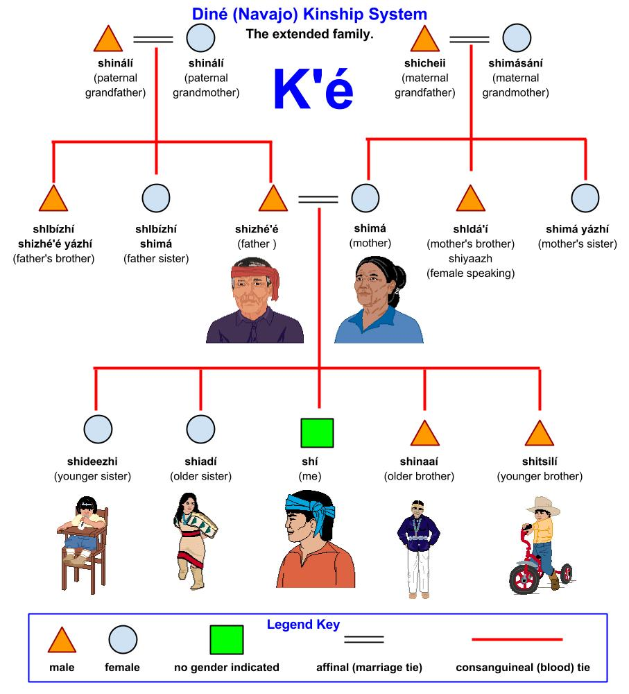 family tree relationship names and meanings