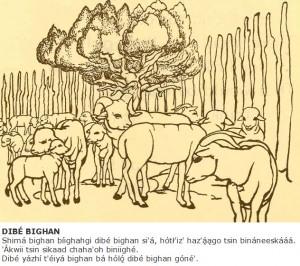 Sheep Corral - Navajo Language Lesson