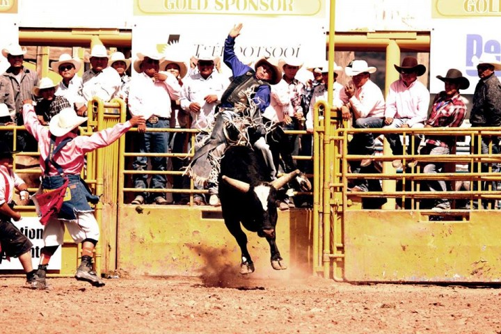 Extreme Bull Riding