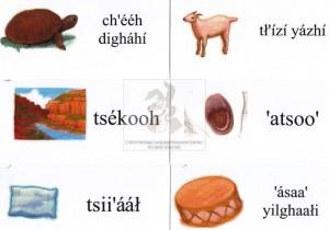 Navajo Vocabulary Flashcards
