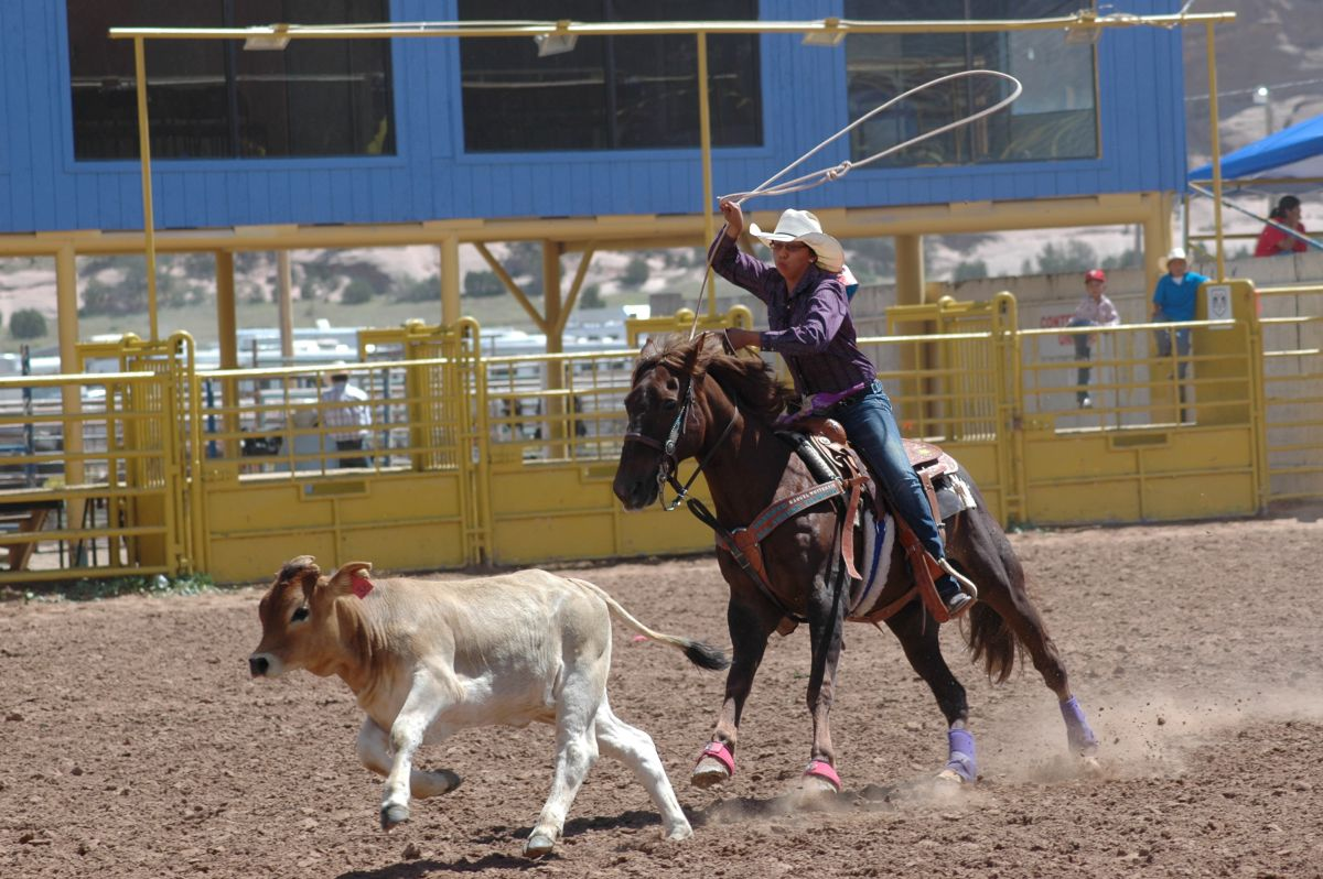 0-junior rodeo