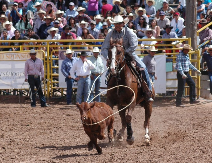 Open Indian  Rodeo-14