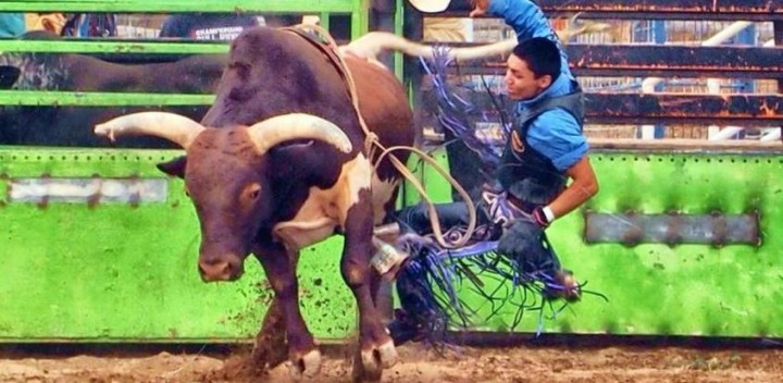 Youth Bull Riding