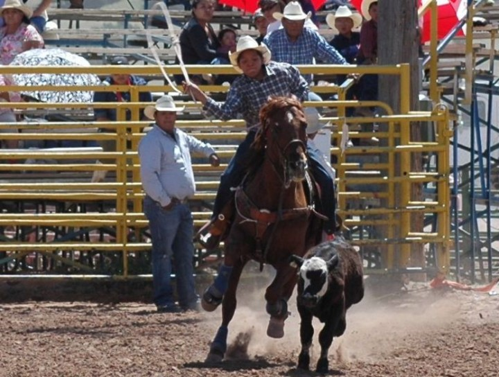 Open Junior Rodeo Shiprock, NM