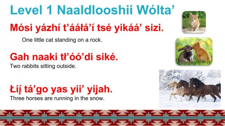 Navajo Language Lesson 6 Numbers  Naaldlooshii Wólta' - Counting Animals