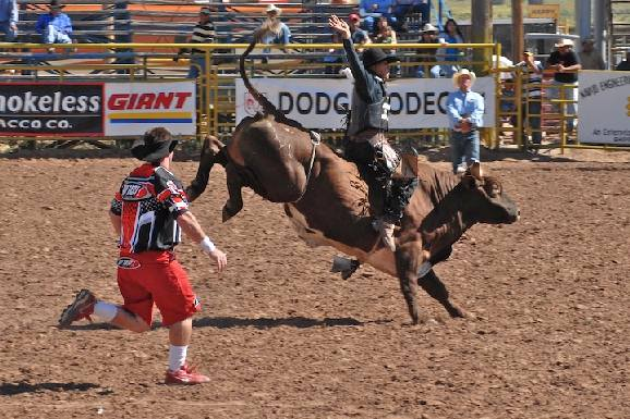 Navajo Nation 4th of July  ProRodeo's