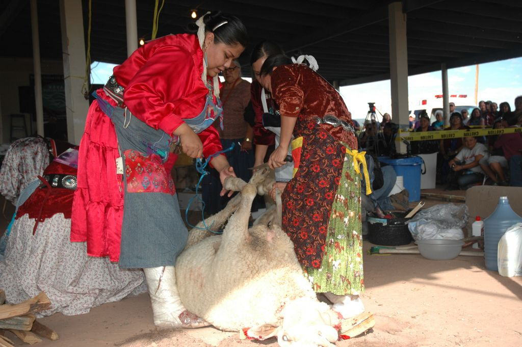 Navajo Sheep Butchering Contest 02