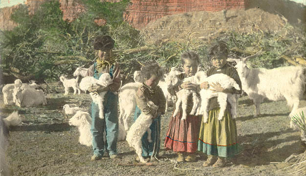 Navajo children and baby goats 1925