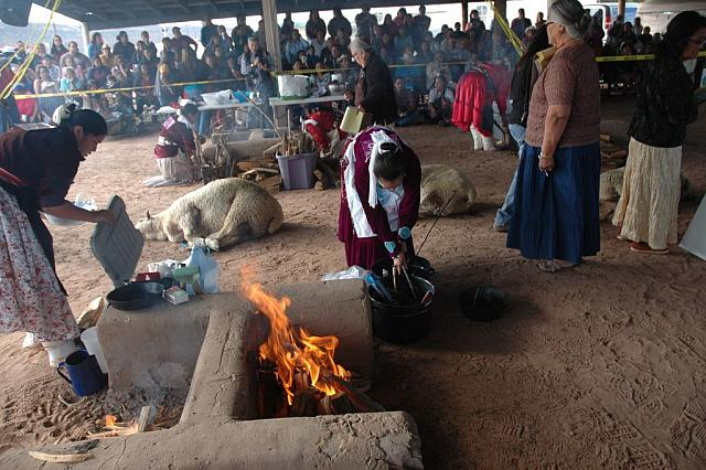 Navajo Sheep Butchering Contest 1