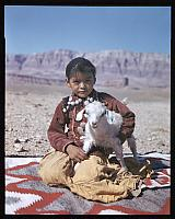 Navajo Child With Lamb c. 1950s
