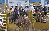 Open Indian  Rodeo