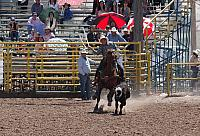 Open Junior Rodeo
