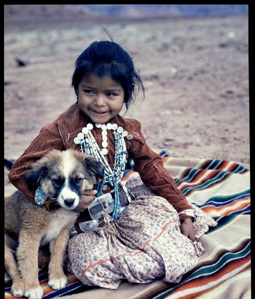 Navajo chicks